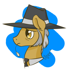 Size: 860x929 | Tagged: safe, artist:cadetredshirt, igneous rock pie, earth pony, pony, bust, cell shaded, ear fluff, frown, hat, head, male, portrait, profile, sideburns, simple background, simple shading, solo, stallion, two toned mane, worried, worry