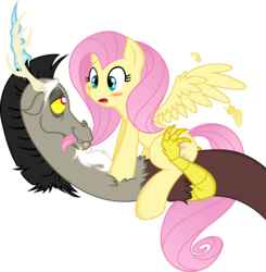 Size: 5000x5098 | Tagged: absurd resolution, artist:dfectivedvice, artist:kamyk962, bedroom eyes, biting, blushing, cute, discord, discoshy, draconequus, feather, female, fluttershy, hair bite, male, open mouth, pegasus, pony, safe, shipping, simple background, straight, transparent background, vector