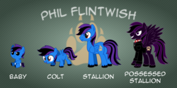 Size: 10000x5000 | Tagged: safe, artist:northernthestar, oc, oc only, oc:phil flintwish, pegasus, pony, absurd resolution, age progression, baby, baby pony, colt, male, possessed, reference sheet, solo, stallion