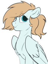 Size: 2656x3500 | Tagged: artist:cold blight, beanbrows, ear freckles, eyebrows, floppy ears, freckles, neck freckles, oc, oc:cold blight, oc only, pegasus, safe, simple background, smiling, solo, transparent background, wings