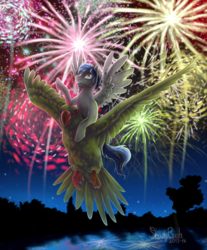 Size: 808x975   Tagged: safe, artist:shady-bush, oc, bird, pegasus, pony, fireworks, male, stallion