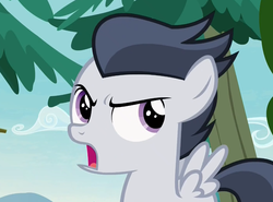 Size: 871x645 | Tagged: angry, colt, cropped, looking back, male, marks and recreation, pegasus, pony, rumble, safe, screencap, solo
