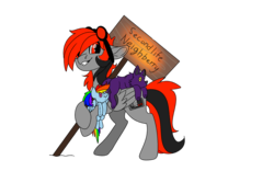 Size: 1920x1200 | Tagged: 2020 community collab, artist:brainiac, chest fluff, derpibooru community collaboration, derpibooru exclusive, neighberry, oc, oc only, oc:serendipity, plushie, rainbow dash, safe, second life, simple background, solo, transparent background, wolf