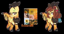 Size: 1280x687 | Tagged: safe, artist:owl-clockwork, oc, oc:summer love, bee pony, original species, pony, female, simple background, solo, transparent background