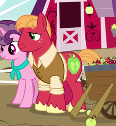 Size: 600x650 | Tagged: apple, big macintosh, cropped, earth pony, female, food, husband and wife, male, mare, older, older big macintosh, older sugar belle, photo, pony, safe, screencap, shipping, smiling, spoiler:s09e26, stallion, straight, sugar belle, sugarmac, sweet apple acres, the last problem, unicorn, wrong aspect ratio