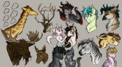 Size: 2350x1300 | Tagged: abyssinian, alternate universe, artist:bootsdotexe, bunny ears, bust, cat, curling horn, deer, dracony, dragon, earth pony, facial hair, female, giraffe, goatee, goggles, gray background, hippogriff, hippogriff oc, horns, hybrid, long description, male, mare, moose, moose calf, non-pony oc, oc, oc:raycraft, pegasus, pony, portrait, realistic, realistic anatomy, reindeer, safe, sandbar, simple background, snip (coat marking), stallion, unicorn, unnamed oc, zebra