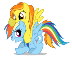 Size: 435x356 | Tagged: artist:mixermike622, female, lesbian, mare, pegasus, pony, rainbow dash, safe, shipping, simple background, spitdash, spitfire, transparent background