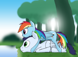 Size: 1486x1080 | Tagged: artist:soks777, female, male, rainbow dash, safe, shipping, soarin', soarindash, straight, tree