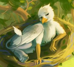 Size: 475x427 | Tagged: safe, alternate version, artist:resurgam_snova, oc, oc only, oc:der, griffon, forest, full body, lying, male, nest, solo, tail, tree