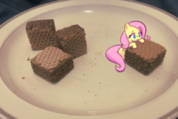 Size: 1181x787 | Tagged: safe, artist:burgeroise, fluttershy, pony, chocolate, cute, female, food, irl, mare, micro, photo, ponies in real life, quadratini, shyabetes, solo, tiny, tiny ponies, waffle