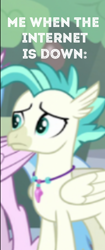 Size: 230x547 | Tagged: safe, edit, edited screencap, screencap, silverstream, terramar, hippogriff, student counsel, spoiler:s09e11, caption, cropped, meme, solo focus, the internet in a nutshell, this will end in tears, this will not end well, wi-fi