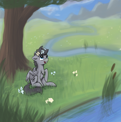 Size: 1724x1730 | Tagged: artist:shaliwolf, chest fluff, floral head wreath, flower, grass, looking up, oc, oc only, open mouth, outdoors, pegasus, ponytail, raised hoof, reed, river, safe, sitting, smiling, solo, spread wings, three quarter view, tree, under the tree, unnamed oc, wings
