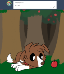 Size: 800x920 | Tagged: safe, artist:askwinonadog, winona, dog, ask winona, apple, apple tree, ask, food, prone, solo, tree, tumblr