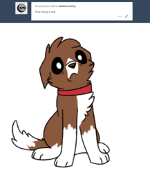 Size: 800x922 | Tagged: safe, artist:askwinonadog, winona, dog, ask winona, ask, concerned, looking at you, simple background, solo, tumblr, white background