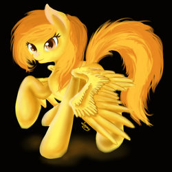 Size: 1000x1000 | Tagged: safe, artist:sa-loony, spitfire, pony, simple background, solo