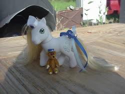 Size: 640x480 | Tagged: safe, artist:lonewolf3878, earth pony, pony, ace attorney, ace attorney investigations, cammy meele, custom, female, g3, irl, photo, teddy bear, toy