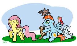 Size: 900x536 | Tagged: safe, artist:prince-harmony, fluttershy, oc, oc:harmony star, alicorn, bat, bird, rabbit, squirrel, alicorn oc, animal
