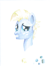 Size: 1482x1920 | Tagged: safe, artist:phat_guy, derpibooru exclusive, star tracker, pony, 2019, awkward smile, bust, colored pencil drawing, coloured pencil drawing, freckles, gift art, grin, gritted teeth, looking at you, male, portrait, smiling, solo, traditional art