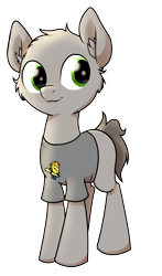 Size: 1264x2152 | Tagged: safe, artist:wenni, derpibooru exclusive, spitfire, oc, oc only, oc:dim, earth pony, pony, 2020 community collab, derpibooru community collaboration, clothes, fluffy, male, shirt, simple background, solo, stallion, transparent background