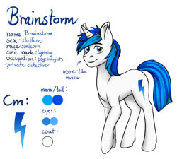 Size: 2000x1800 | Tagged: safe, artist:alexispaint, oc, oc:brainstorm, pony, male, reference sheet, solo, text