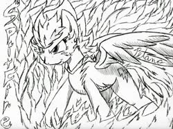 Size: 1035x772 | Tagged: safe, artist:petanoprime, spitfire, pegasus, pony, female, fire, grin, lineart, mare, monochrome, signature, smiling, solo, text, traditional art