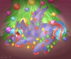 Size: 1280x1066 | Tagged: safe, artist:ilona furry, oc, oc:hellfire, pegasus, blue fur, bondage, christmas, christmas lights, christmas tree, colt, foal, holiday, male, red eyes, tied up, tree, wings