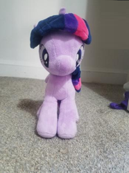 Size: 349x468 | Tagged: safe, rarity, twilight sparkle, alicorn, unicorn, 4de, closet, irl, photo, photography, plushie, twilight sparkle (alicorn)