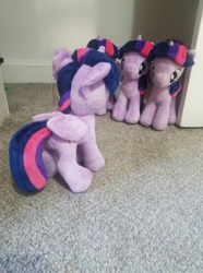 Size: 349x468 | Tagged: safe, twilight sparkle, alicorn, pony, 4de, assimilation, character to character, closet, implied transformation, irl, multeity, photo, photography, plushie, self ponidox, sparkle sparkle sparkle, twilight sparkle (alicorn)