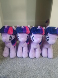 Size: 349x468 | Tagged: safe, twilight sparkle, alicorn, pony, unicorn, 4de, assimilation, closet, implied transformation, irl, multeity, photo, plushie, self ponidox, sparkle sparkle sparkle, twilight sparkle (alicorn)