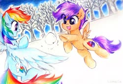 Size: 3415x2322 | Tagged: safe, artist:liaaqila, rainbow dash, scootaloo, pegasus, pony, commission, cutie mark, scootalove, snow, snowball, snowball fight, the cmc's cutie marks, tree