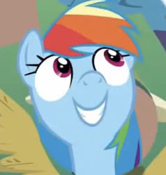 Size: 330x347 | Tagged: safe, screencap, rainbow dash, pegasus, pony, stranger than fan fiction, cropped, female, looking up, mare, nose in the air, solo
