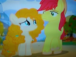 Size: 4160x3120   Tagged: safe, screencap, bright mac, pear butter, earth pony, pony, the perfect pear, apple farm, blushing, cropped, in love, looking at each other, low quality, parent, pear farm, picture of a screen, raised hoof, smiling