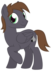 Size: 1125x1575 | Tagged: safe, artist:the smiling pony, oc, oc only, oc:wingbeat, pegasus, pony, 2020 community collab, derpibooru community collaboration, .svg available, bags under eyes, folded wings, looking at you, male, raised leg, simple background, smiling, solo, stallion, svg, transparent background, vector, wings