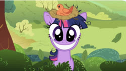 Size: 637x362 | Tagged: safe, edit, edited screencap, editor:undeadponysoldier, screencap, twilight sparkle, bird, pony, unicorn, lesson zero, adoracreepy, creepy, cute, face swap, female, looking at you, mare, nest, smiling, twilight snapple, unicorn twilight