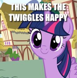 Size: 633x637 | Tagged: safe, edit, edited screencap, screencap, twilight sparkle, alicorn, pony, pinkie pride, caption, cropped, cute, female, image macro, mare, smiling, text, twiggles, twilight sparkle (alicorn)