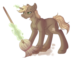 Size: 3726x2988 | Tagged: safe, artist:amazing-artsong, oc, oc only, oc:sweeper, pony, unicorn, broom, digital art, female, high res, magic, male, simple background, solo, stallion, transparent background