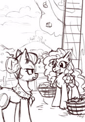 Size: 2067x2953 | Tagged: safe, artist:amy-gamy, granny smith, pear butter, earth pony, pony, apple, apple tree, barrel, chest fluff, duo, duo female, female, fence, ladder, mare, monochrome, mother and daughter-in-law, sketch, tree