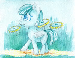 Size: 2000x1559   Tagged: safe, artist:0okami-0ni, female, filly, flower, helid, huevember, solo, sunflower, traditional art