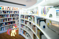 Size: 1957x1306 | Tagged: safe, artist:luckreza8, moondancer, pony, unicorn, book, bookshelf, female, glasses, irl, library, photo, ponies in real life