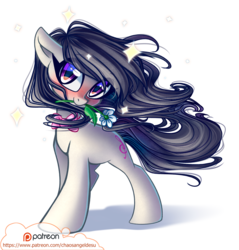 Size: 1000x1048 | Tagged: safe, artist:chaosangeldesu, octavia melody, earth pony, pony, blushing, cute, female, flower, flower in mouth, looking at you, mare, mouth hold, patreon, patreon logo, smiling, solo, tavibetes