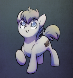 Size: 1088x1170   Tagged: safe, artist:dawnfire, oc, earth pony, pony, solo