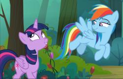 Size: 1460x940 | Tagged: alicorn, cropped, duo, everfree forest, excited, flying, lidded eyes, rainbow dash, safe, screencap, smiling, smirk, the mean 6, twilight sparkle, twilight sparkle (alicorn)