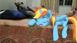 Size: 714x401 | Tagged: alicorn, artist:mojing, broken horn, fallout equestria, horn, oc, oc:dusking sky, oc:littlepip, photo, photoshop, plushie, pony, safe, sleeping in the bed