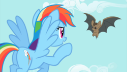 Size: 2500x1405   Tagged: safe, screencap, rainbow dash, bat, pegasus, pony, may the best pet win, animal, duo, female, flying, mare, spread wings, wings