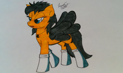 Size: 1200x716 | Tagged: safe, artist:lucas_gaxiola, oc, oc only, pegasus, pony, bedroom eyes, clothes, female, mare, signature, socks, solo, traditional art