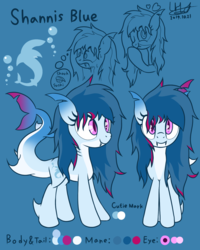 Size: 1200x1500 | Tagged: artist:livehotsun, female, mare, oc, oc only, oc:shannis blue, original species, pony, reference sheet, safe, shark, shark pony, solo