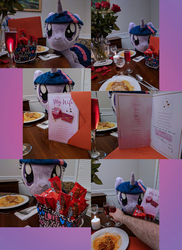 Size: 1818x2500 | Tagged: safe, artist:plushwaifus, photographer:corpulentbrony, twilight sparkle, alicorn, alcohol, big kat, candle, candy, card, champagne, chocolate, collage, disembodied arm, disembodied hand, female, flower, food, forever alone, greeting card, hand, hearts and hooves day, holiday, irl, kit kat, meme, pasta, photo, plushie, present, spaghetti, toasting, twilight sparkle (alicorn), valentine's day, waifu dinner, wife, wine