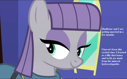 Size: 1728x1080 | Tagged: cropped, dialogue, edit, edited screencap, female, implied mudbriar, implied wedding, maudabetes, maudbriar, maud pie, maud pie (episode), pony, safe, screencap, shipping, smiling, straight, the maud couple, when she smiles
