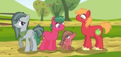 Size: 4320x2030 | Tagged: artist:thepegasisterpony, base used, big macintosh, colt, earth pony, family, male, marblemac, marble pie, missing accessory, neckerchief, oc, oc:alum apple, oc:watermelon tourmaline, offspring, parent:big macintosh, parent:marble pie, parents:marblemac, pony, safe, shipping, straight, sweet apple acres