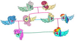 Size: 1686x901 | Tagged: alicorn, alicornified, artist:徐詩珮, cousins, family, family tree, female, fluttershy, lesbian, magical lesbian spawn, male, mare, mr. shy, mrs. shy, offspring, parent:fluttershy, parent:rainbow dash, parent:spring rain, parents:springshy, parents:zephdash, parent:zephyr breeze, pegasus, pony, race swap, rainbow dash, safe, shipping, siblings, spring rain, springshy, stallion, straight, unicorn, zephdash, zephyr breeze